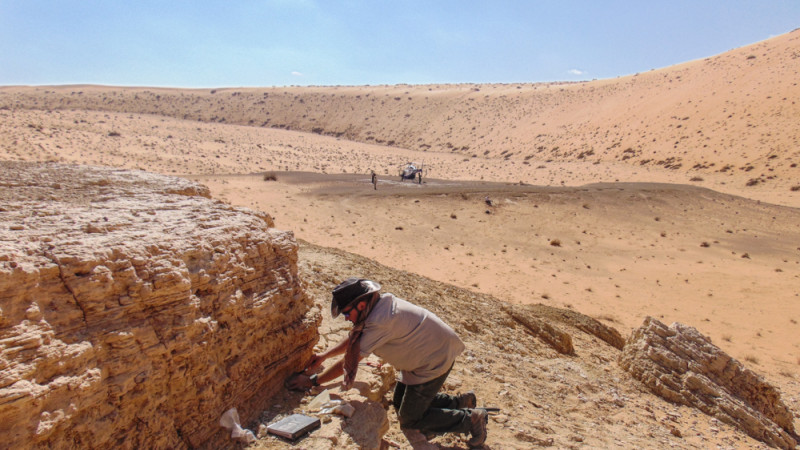 The team sampling and surveying deep in the Nefud desert